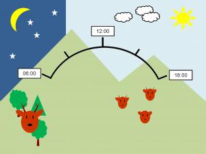 Infographic Bockjagd
