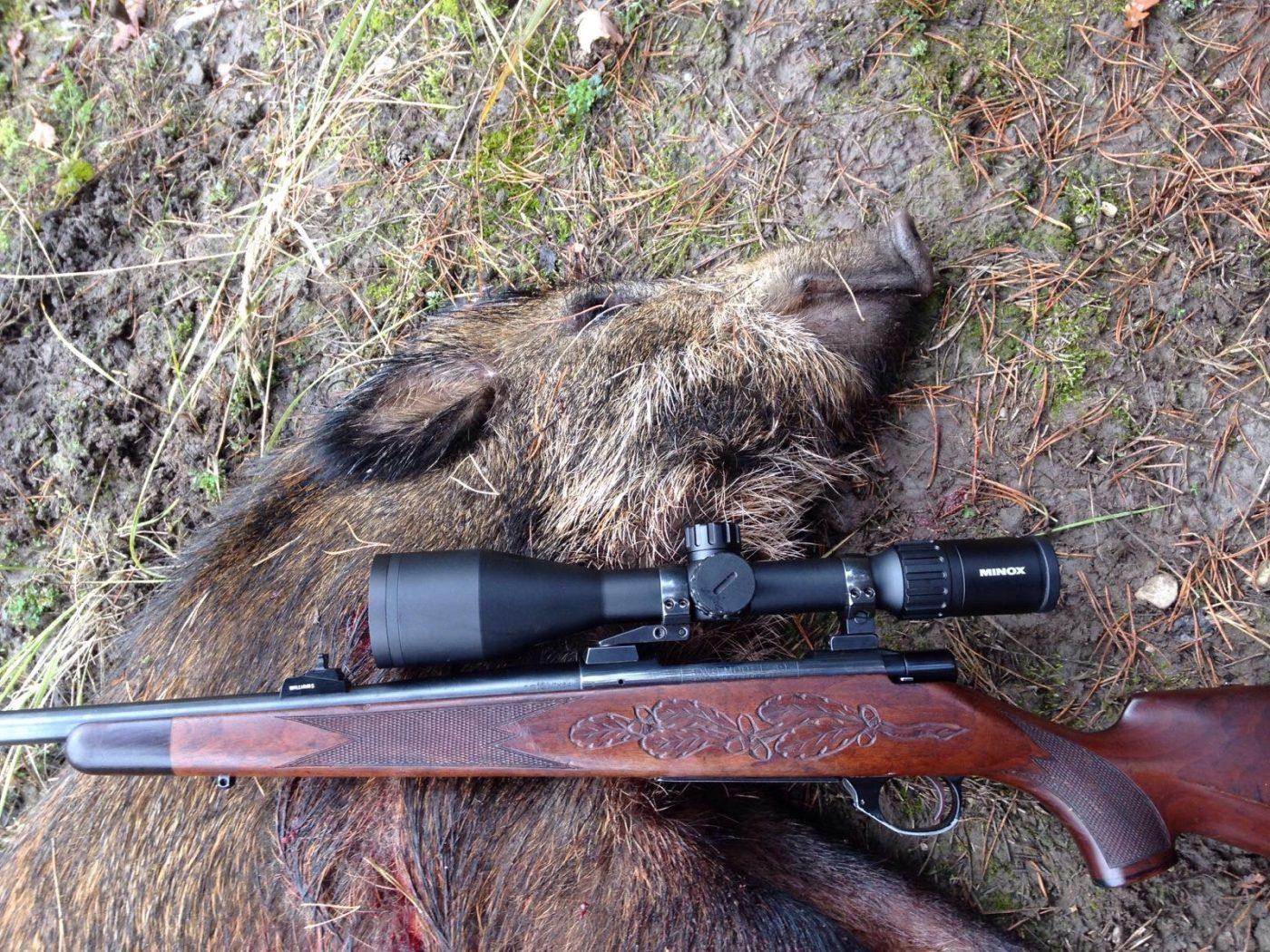 Wildschwein mit RWS Typ 89 und Minox ZX5i 3-16x56