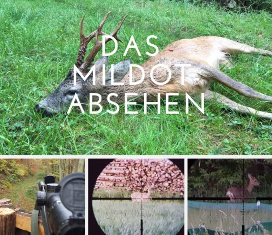 Beitragsbild MilDot-Absehen