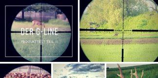 G-Line Beitragsbild