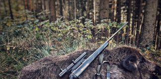 Jagderfolg mit Tikka T3 und 3HGR Driven Trageriemen.jpeg
