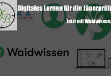 Beitragbild Waidwissen.com