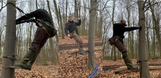 Einbinden in den Baum II
